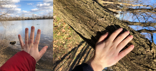 Two photos of the author, a white non-binary person. One image shows the author extending their hand against a scenic backdrop of water. The second image shows the author tenderly touching the trunk of a tree.
